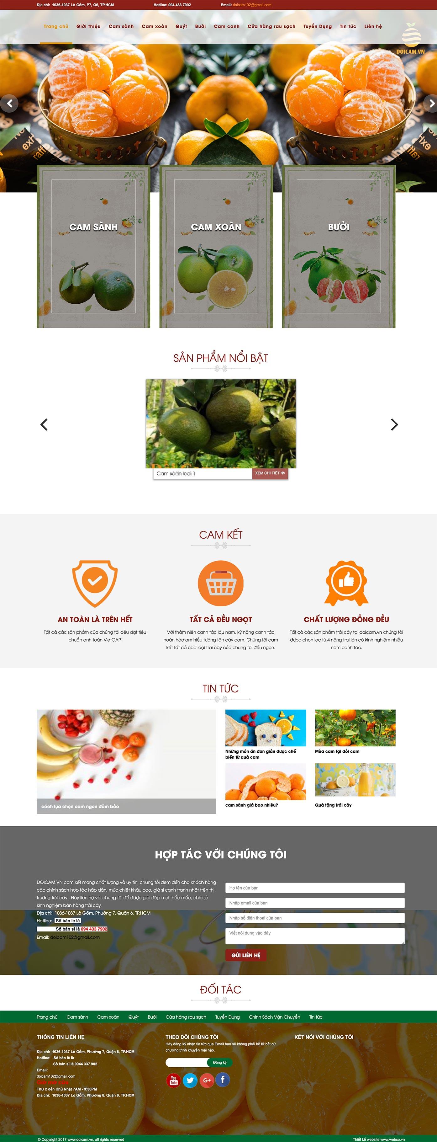 Mẫu website trái cây sạch 13514