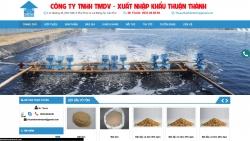 Thiết kế web dịch vụ Cty Thuận Thành