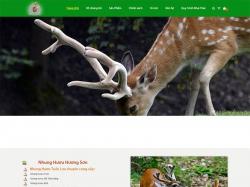 Thiết kế website bán hàng Hương Sơn