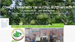 website bán hàng công ty TNHH TM MTV Hương Bưởi Mỹ Hòa