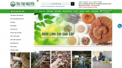 website bán hàng traxanhvietnam.com